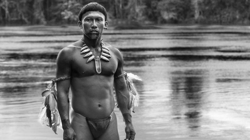 Illustration for article titled Embrace Of The Serpent is a head trip that explains itself too much