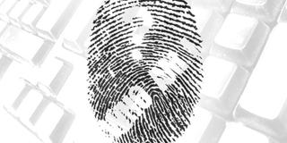 Illustration for article titled Establish and Maintain Your Online Identity