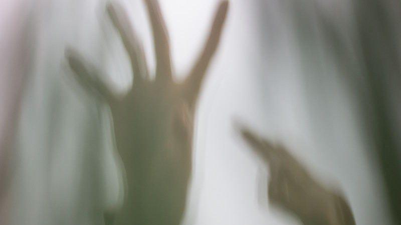 Illustration for article titled Para celebrar Halloween, el MIT permitirá que Internet controle las acciones de un humano