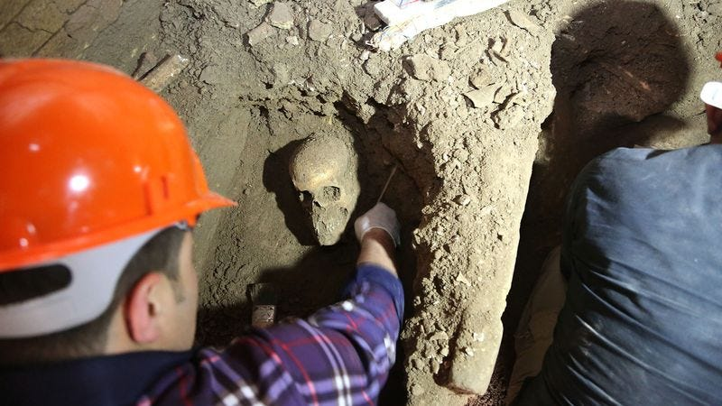 The total lack of abrasion along the cheekbones and above the brow ridge suggest to archaeologists that a recently discovered early ancestor spent little time burying his head in his hands.