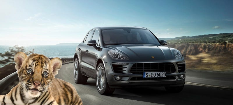 Illustration for article titled PETA Smacks Down Plan To Put Tiger Cubs In Porsche Dealerships