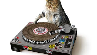 Illustration for article titled Cat Scratch Turntable Is the Only Stupid Thingamajig That Actually Needs a USB Connection