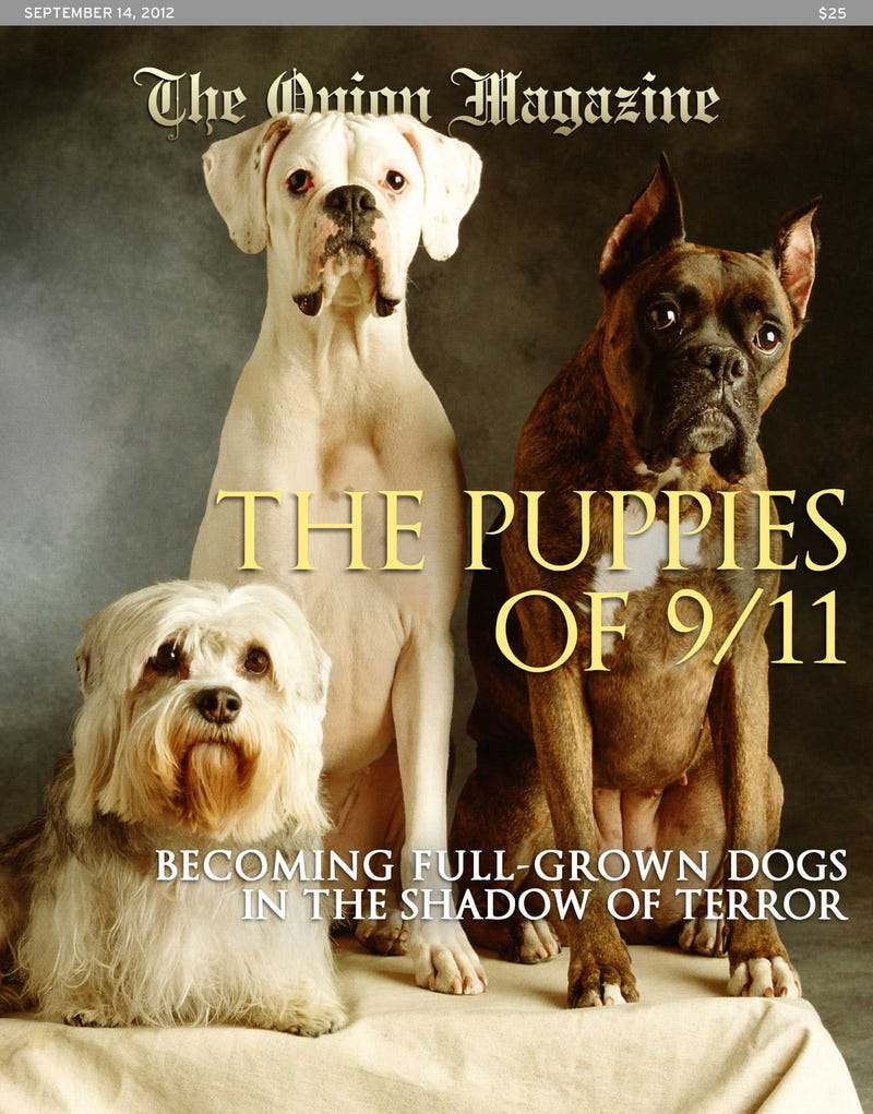 Illustration for article titled The Puppies Of 9/11: Becoming Full-Grown Dogs In The Shadow Of Terror