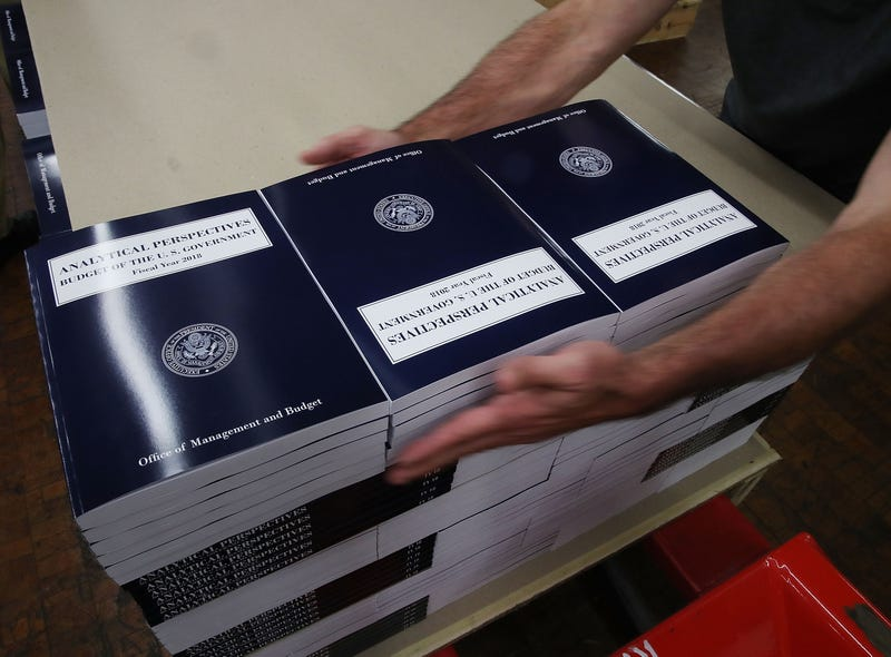 Copies of President Donald Trump's fiscal year 2018 budget books are stacked at the Government Publishing Office on May 19, 2017, in Washington, D.C.  (Mark Wilson/Getty Images)