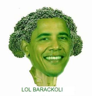 Illustration for article titled Lol Barackoli