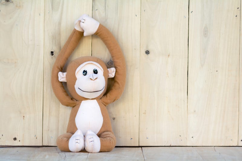 Illustration for article titled Florida Woman Walks Into Work to Find Monkey With a Noose Around Its Neck, Racist Notes in Her Office: Report