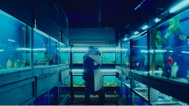 A timely pandemic tests one couple's love in the otherwise forgettable Little Fish