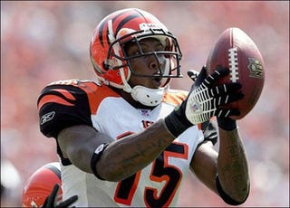 Illustration for article titled Bengals WR Chris Henry Dies After Falling Out Of Pickup Bed
