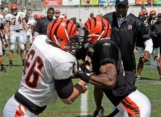 """Illustration for article titled What To Expect From """"Hard Knocks: Cincinnati Bengals"""""""