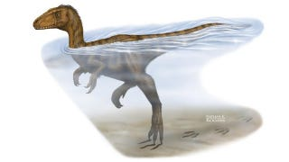 Illustration for article titled Why escaping to the water wouldn't have saved you from a dino attack