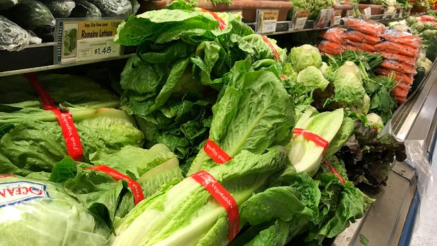 Here s What s Wrong With Romaine Lettuce