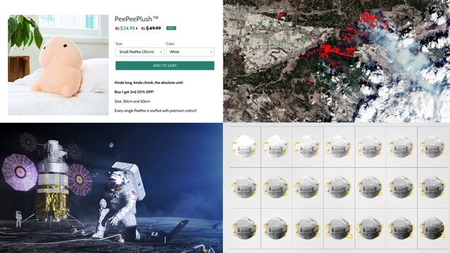 Penis Plushies, Zoom's Google Problem and Lessons From Apollo 13: Best Gizmodo Stories of the Week