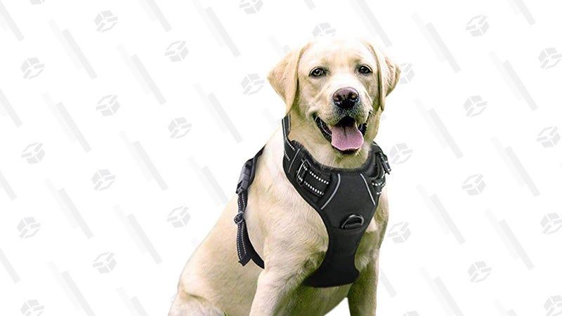 Rabbitgoo Dog Harness, Large | $11 | Clip 10% and use promo code 35YSRU3Z