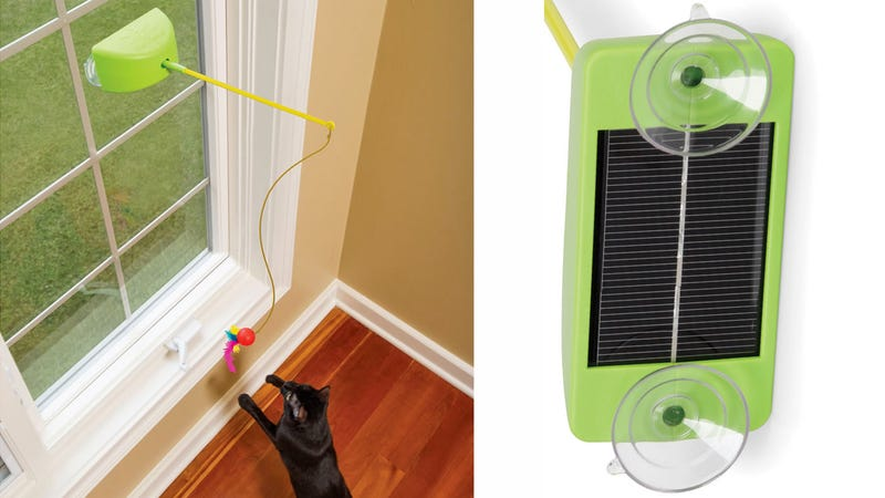 Illustration for article titled Solar-Powered Cat Toy Taunts Your Feline Forever