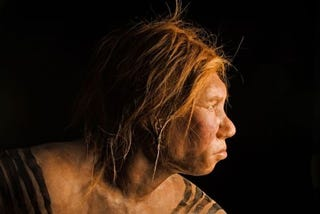 Illustration for article titled Neanderthals Ate Each Other and Used Their Bones as Tools