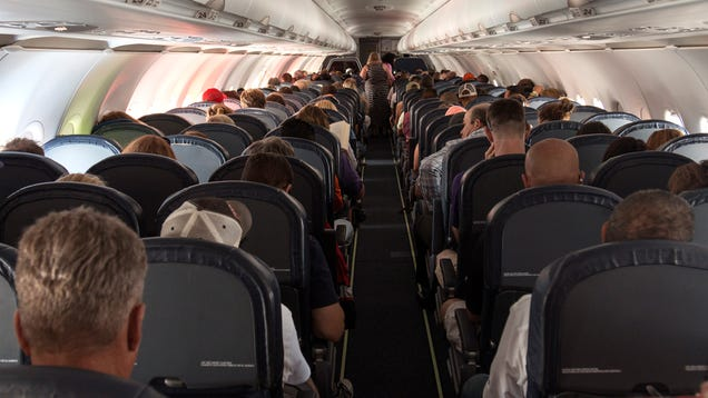 Report: At Least Flight Home To Be Little Less Crowded