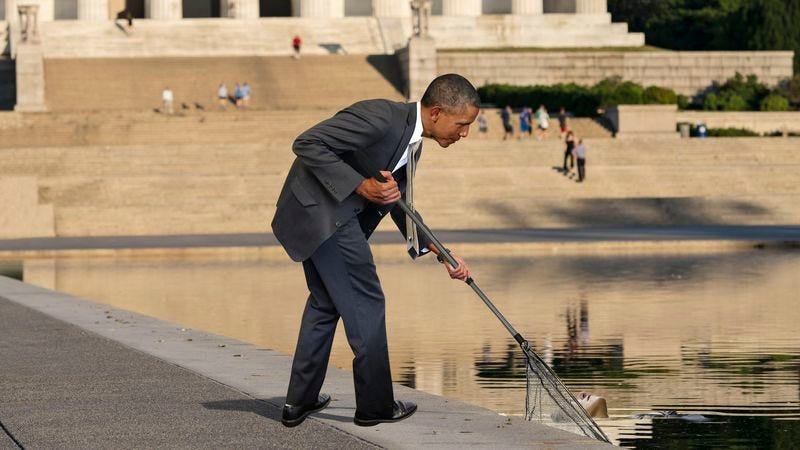 Illustration for article titled Above And Beyond: Obama Spent His Entire Morning Fishing Drowned Tourists Out Of The Lincoln Memorial Reflecting Pool