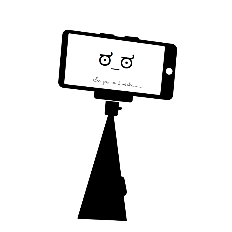 Illustration for article titled Selfie end