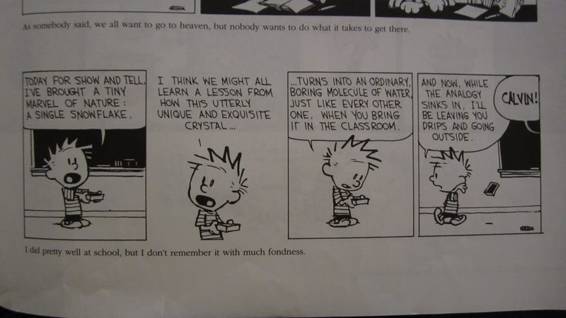 Illustration for article titled Philosophical Calvin
