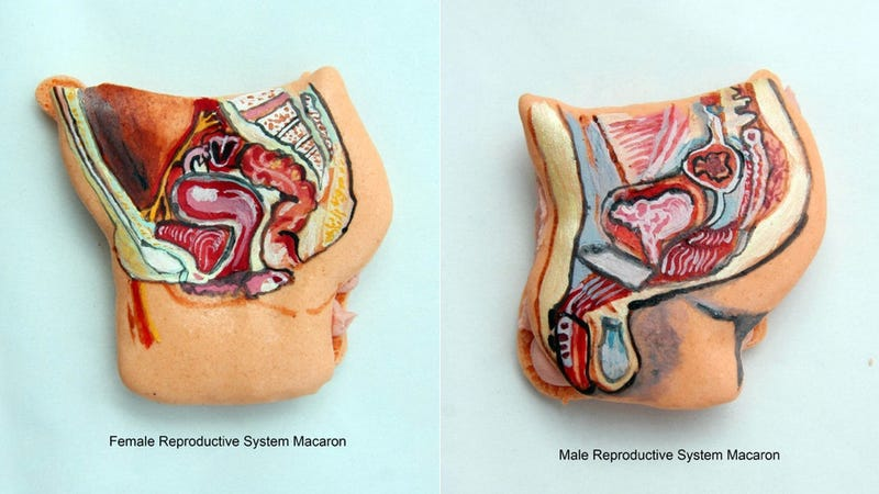 Illustration for article titled Hand-Painted Macaron Cookies Resemble Colorful Cartoon Organ Meat