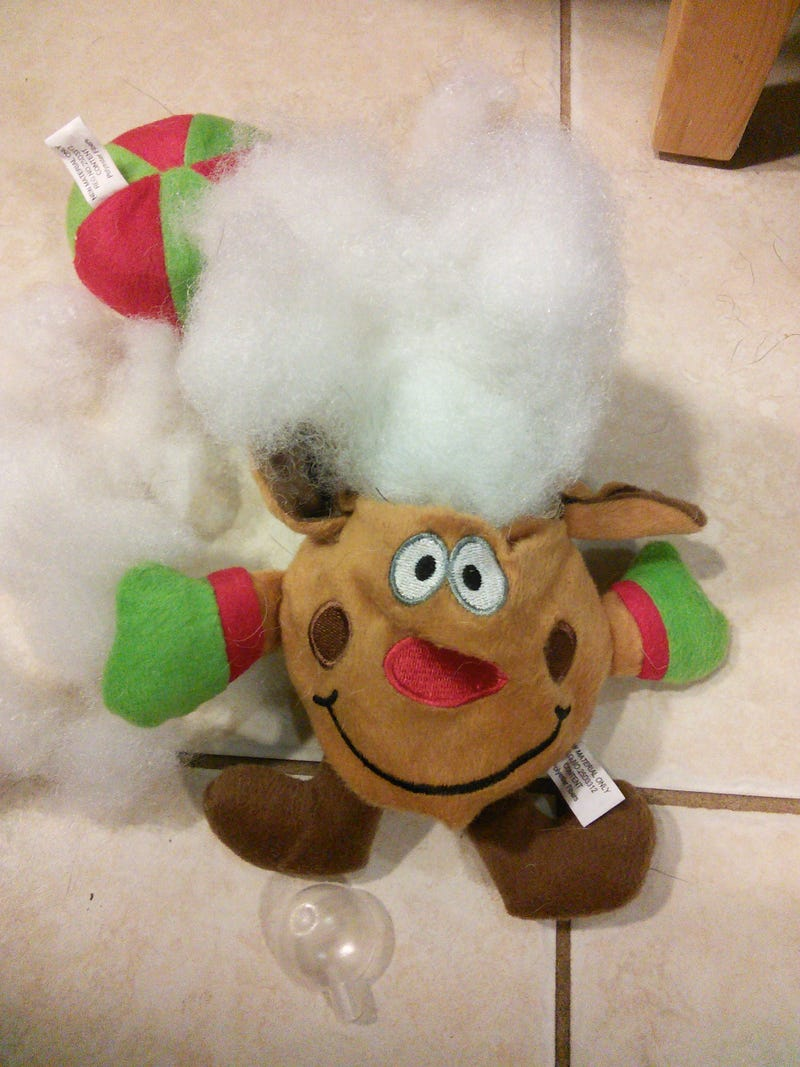 Illustration for article titled The plush reindeer Christmas chew toy has been viciously mutilated