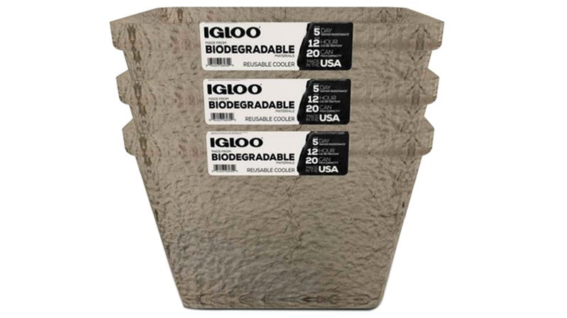 Illustration for article titled Igloo's New Foam-Free Coolers Are Made From Biodegradable Tree Pulp