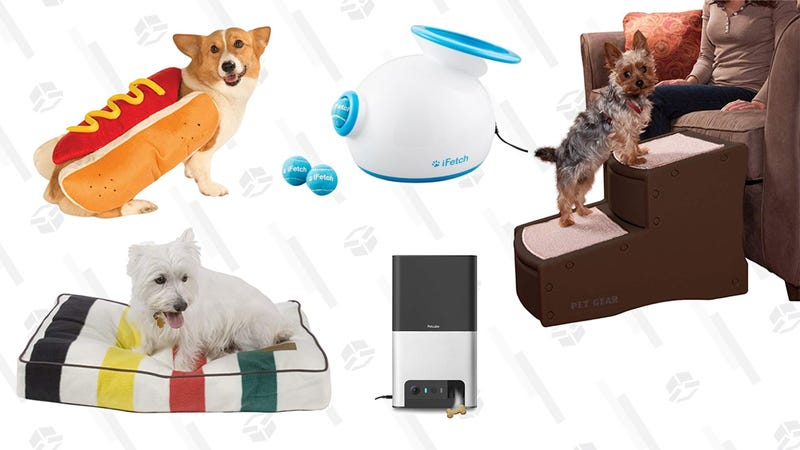 Illustration for article titled Celebrate National Dog Day By Spoiling Your Dog With These Goodies