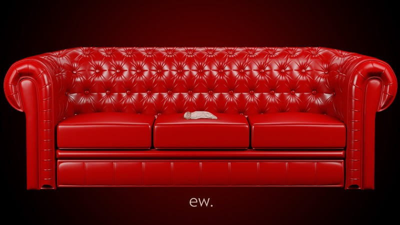 Illustration for article titled Impassioned Email From a Sorority Sister: NO SEX ON THE RED COUCH