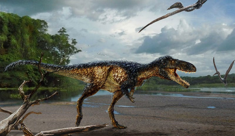 Illustration for article titled Behold Timurlengia—the Elusive Missing Link in Tyrannosaur Evolution