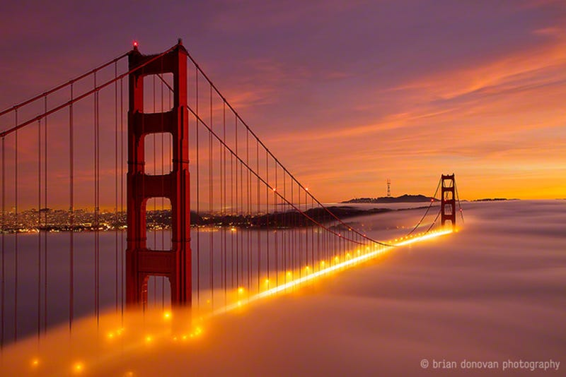 Illustration for article titled Awesome image of the Golden Gate Bridge burning in a sea of fog
