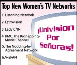Illustration for article titled Top New Women's TV Networks