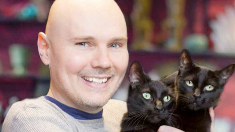 Illustration for article titled Billy Corgan Tells Anderson Cooper to Fuck Off — With Cats!
