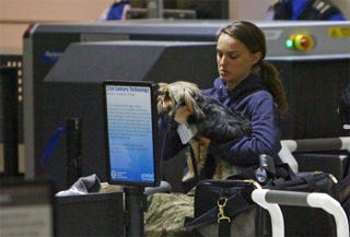 Illustration for article titled Natalie Portman Checks Laptop Lapdog Through Security Line
