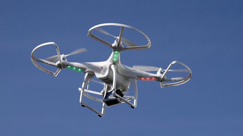 Illustration for article titled These Autonomous Drones That Flock Like Birds Sound Horrifying