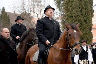 Illustration for article titled Fejezze be a kormány a lovastársadalom becsapását, átverését, lenézését!