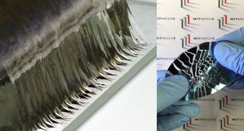 Illustration for article titled El último invento del MIT: un pegamento tan fuerte como el cartílago que es 90% agua
