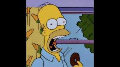 the simpsons classic homer s phobia