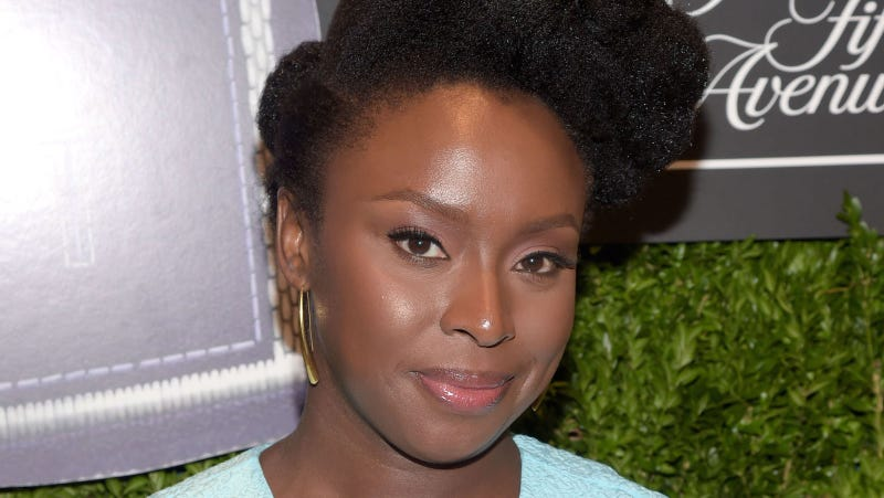 chimamanda adiche and the issue of abortion Chimamanda ngozi adichie grew up in nigeria her work has been translated into thirty a people and black issues book review best book of the year.