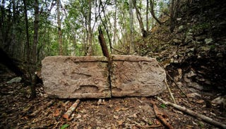 Illustration for article titled Enormous, ancient Maya city found in Yucatán jungle