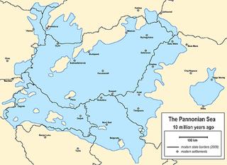 Illustration for article titled Tízmillió éve irtó szopó volt Szegeden élni