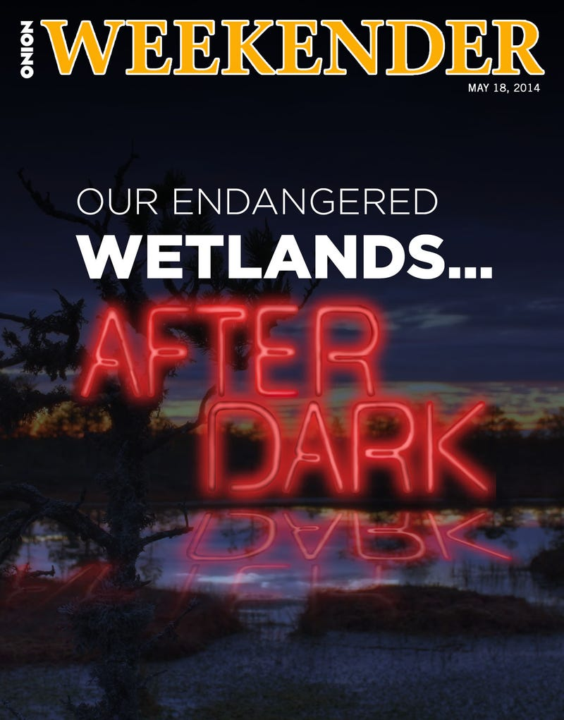 Illustration for article titled Our Endangered Wetlands... After Dark