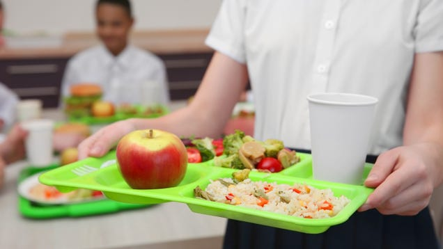It s Time to Check Your School s Lunch Debt Policy