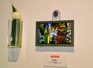 Illustration for article titled Sony Shows Off Completely Wireless OLED TV