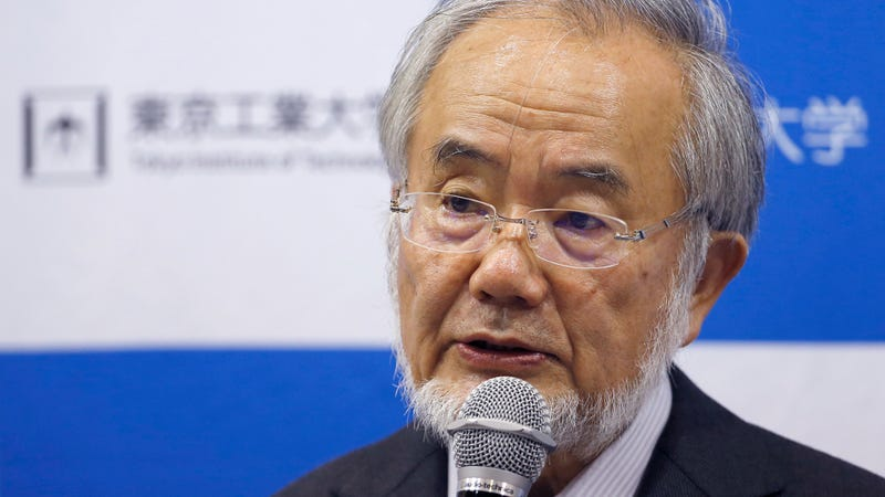 Nobel Prize winner Yoshinori Ohsumi at a press conference at the Tokyo Institute of Technology in Tokyo Monday, Oct. 3, 2016. (Image: AP)