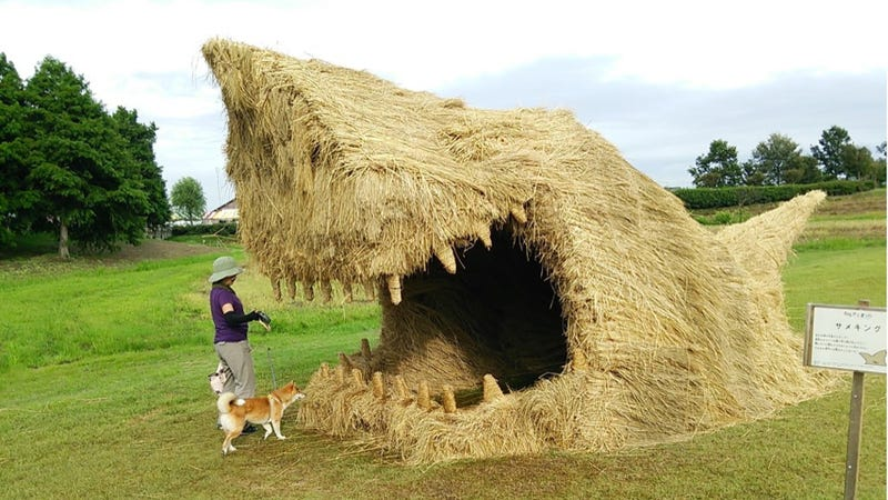 Illustration for article titled Japan's Straw Beasts Are Huge, Wonderful, and Highly Flammable
