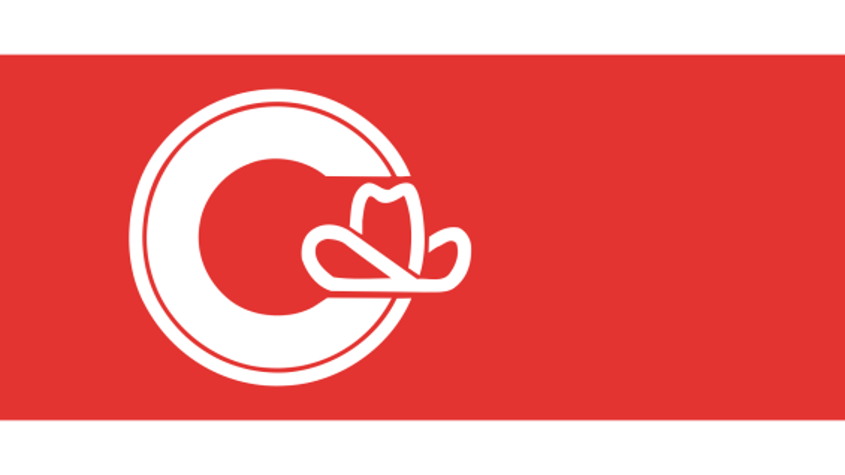 Are These The Ugliest City Flags on Earth?
