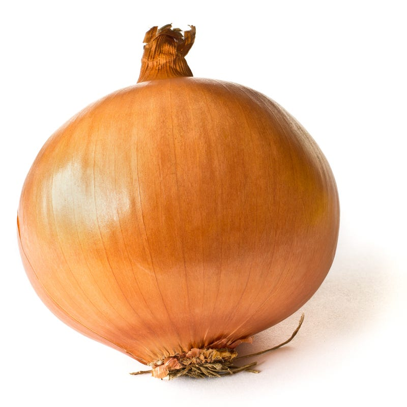Illustration for article titled Onion
