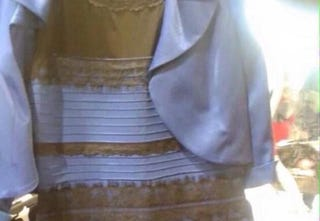 """Illustration for article titled The """"What Color Is This Goddamn Dress?"""" Debate Explained By Science"""