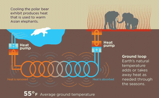 Illustration for article titled How Polar Bears Will Keep the Elephants Warm at the Oregon Zoo