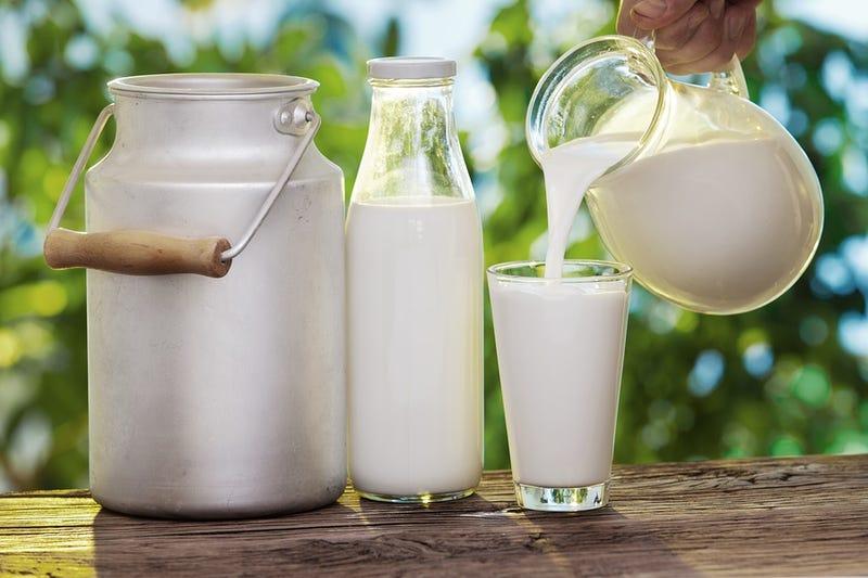 Illustration for article titled La leche cruda está detrás de 96 de cada 100 intoxicaciones por lácteos en Estados Unidos